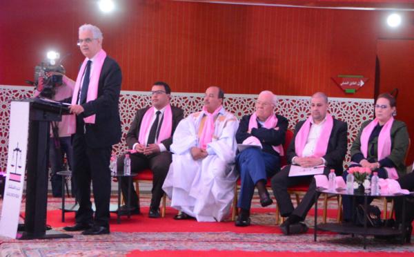 نزار بركة : حل قضية الوحدة الترابية للمملكة ممكن كما يترجمه مقترح الحكم الذاتي تحت السيادة المغربية